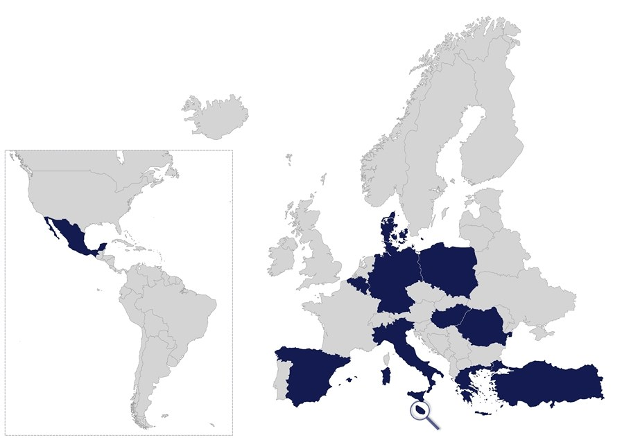 Quality audit: Silver Label of the European Cluster Excellence Initiative (ECEI)
